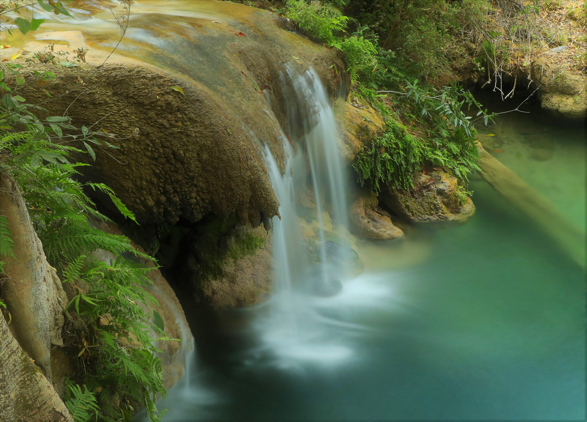 Cerca de Grutas de Cacahuamilpa